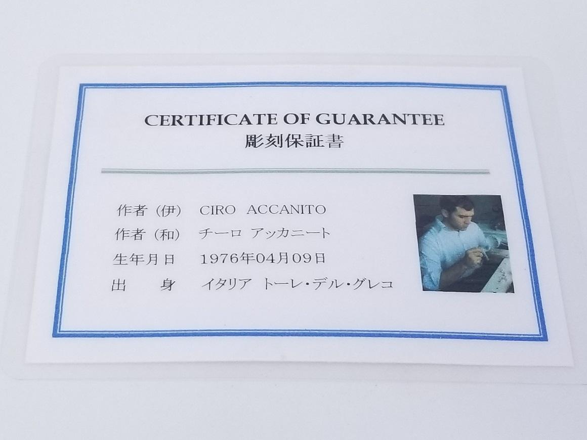 カメオ チーロ・アッカニート氏作スライド06